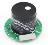 Pid de Sensor van de Detector 2000 van het Alarm van de Foto-ionisering van de Detector van Tvoc P.p.m. van de Opsporing Mdq 100 van het Lek Ppb