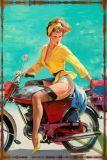Beach&Belle reizvoller Entwurfs-Retro Weinlese-Zinn-Zeichen-Großverkauf