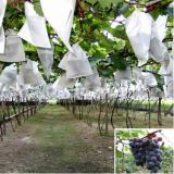 Breathable PP Nonwoven Fabric Winter Frost Protective Protection Grow Bags/Seedling Jackets/Frost Protection Cover Bags