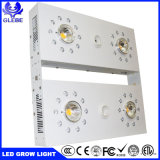 トール1000Wの穂軸の完全なスペクトルLEDはクリー族のCxb 3590 LEDチップと軽く育つ