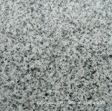 平板およびタイルのための磨かれた灰色の花こう岩G640
