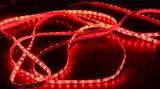 Lumières de bande de Watertproor SMD5050 de couleur de W/RGB pour la décoration d'hôtel/marché/pièce avec 3 ans de garantie
