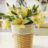 [موثر دي] هبة [فوإكس] زنبقة زهرة أبيض طازج زنبقة لأنّ عرس مشردة تركيب وبينيّة حزب زخرفة