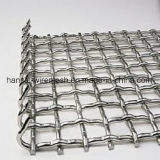 304 Stainless Steel 40*60mm Public garden Wire Mesh for Barbecue