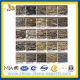De steen-Culturele Steen van het landschap met de Bekleding van de Muur (yY-Culturele lei)