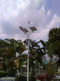 turbine de vent 300W et réverbères solaires de l'hybride 48W LED avec du CE
