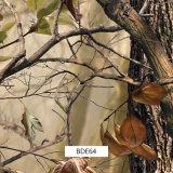 Пленки Prinitng перехода воды Camo листьев для напольного Itmes (BDE11-5)
