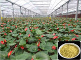 Fertilizante composto de NPK 17-17-17 ambiental NPK para a fruta
