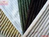 Costela (HZS veludo velo--0026)