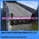 Hohes Carbon Steel Crimped Wire Mesh von Factroy