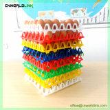 Het het beste Verkopende Kleurrijke Plastic Ei van Kwartels en Dienblad van het Ei