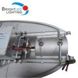 Forme du Dauphin 60W Meurent le Réverbère de la Fonte D'aluminium LED