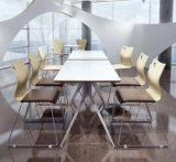 겹쳐 쌓이는 현대 작풍 의자 식사