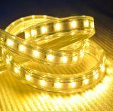3year indicatore luminoso di striscia decorativo poco costoso su luminoso impermeabile della garanzia LED