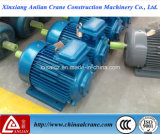 Motor de cobre elétrico chinês do rotor de Yz