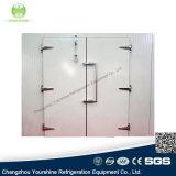 Sgs-anerkannte Qualitäts-Rücklauf-Tür für Kühlraum/Kaltlagerung