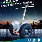 21 Zoll-Selbst, der 1266wh 72V 4000W fetter Gummireifen-elektrischen Roller balanciert