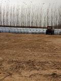 밀짚 포장 필름 폭 파키스탄 시장 알팔파와 옥수수 포장을%s 250mm, 500mm 및 750mm 백색, 녹색과 까만 색깔