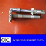 Stahlgang-Zahntrieb und Welle