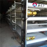Malla de alambre soldado completamente automático de la Capa de galvanizado de la jaula de pollo huevos granja avícola Forpoultry equipos para la pequeña granja
