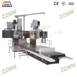 Precisión china CNC tipo pórtico Rectificadora de carril (MC2880)