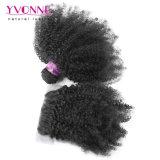 Закрытие курчавых волос бразильского Afro Kinky