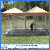 Ineinander greifen, das für Hunde10x10x6 galvanisierte im Freienhundehundehütte ficht