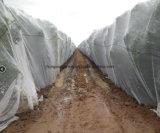 Сеть насекомого нового HDPE 100% аграрная анти-