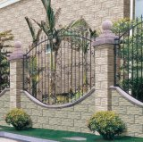 Digital out Door Ceramic Wall Tiles (66351)