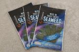 Стороны сбывания 3 Китая горячие герметизируя Sachet для листа Seaweed