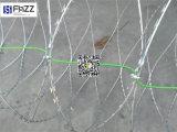 Bto 22, Cbt 65 de Bescherming Gegalvaniseerde Omheining van de Draad van Babed van het Scheermes