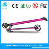 Elektrischer faltbarer Roller mit chinesischer Lithium-Batterie 24V 8.8ah