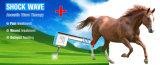 Equipo veterinario equino de la terapia de la onda expansiva para los animales