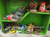 Много типов, ботинки спорта детей, ягнятся ботинки, вскользь Shoes-60000pairs