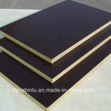 Marine láminas de madera contrachapada, Film enfrenta el contrachapado (encofrados encofrado, construcción, madera)