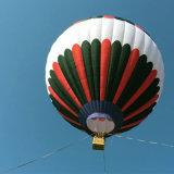 Carga del globo del aire caliente 550 kilogramos para visitar puntos de interés y hacer publicidad