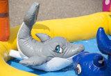 Opblaasbaar Opblaasbaar het Springen van het circus Kasteel Combo voor Verkoop CB0703