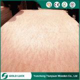 Comercial Bintangor de buena calidad para la decoración y muebles de madera contrachapada