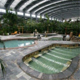El mejor edificio de interior de la piscina de la estructura de acero del diseño para la venta
