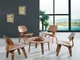 Tavolino da salotto di legno del progettista caldo