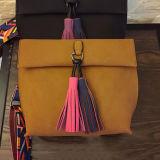 색깔 결박과 술 지갑 Sy8147를 가진 새로운 간단한 Lovely 숙녀 어깨에 매는 가방