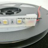 6500k blanco 60LEDs / M Luz LED pela 5050