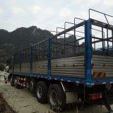 De Vrachtwagen van de Lading van Shacman 10X4