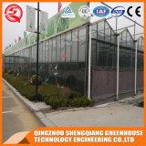 Groene Huis van het Glas van de Bloem van de multi-spanwijdte het Plantaardige Aangemaakte