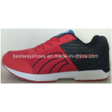 Chaussures Chaussures Sport