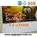 Papier de traçage résistant de l'eau pour esquisser et dessiner