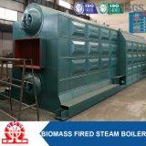 Caldera de vapor industrial horizontal de la cáscara del arroz de la biomasa