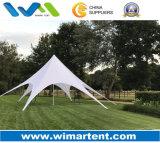 Напольный шатер тени звезды 13m для случаев партии лета сь