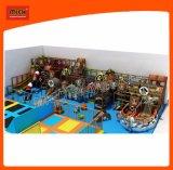 Cour de jeu d'intérieur de parc d'attractions de matériel d'amusement de Mich