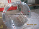 Arame Ovaladoの楕円形の電流を通されたワイヤー